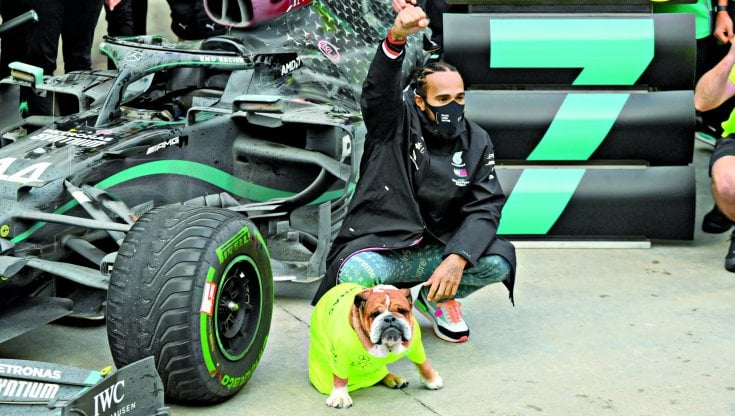 Roscoe, il bulldog vegano di Hamilton star di Instagram