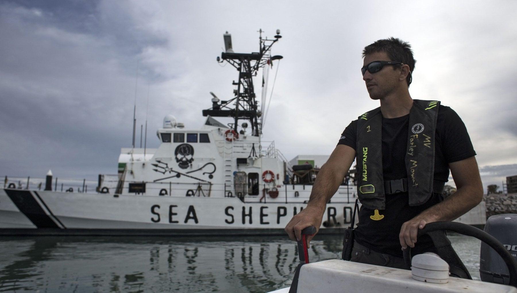112246942 559c2055 031f 4b07 885f 18780ca6647a - Battaglia in mare con gli ambientalisti, muore un pescatore