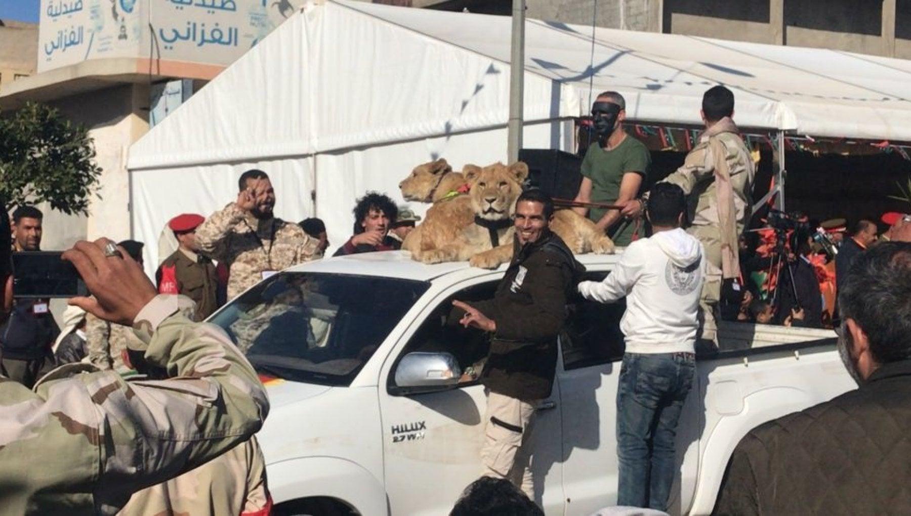 185145628 713505f6 86b3 4795 94ea 105562325550 - Libia, i sette fratelli che hanno terrorizzato una città con stragi e leoni