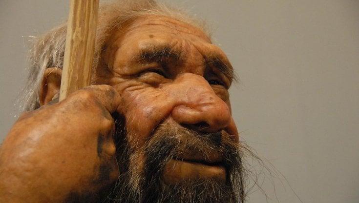 Un mini-cervello dal gene dei Neanderthal