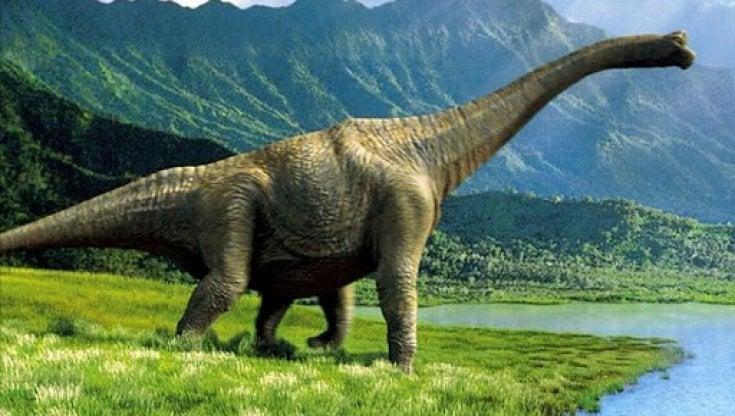 Lo studio: il clima potrebbe aver ritardato migrazione dei dinosauri