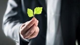 I valori etici delle imprese: così la finanza potrà fare scelte mirate