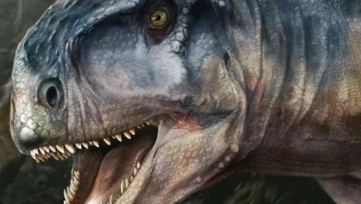 Ottanta milioni di anni dopo quel mostruso predatore fa ancora paura