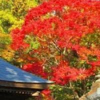 Giappone, il miracolo dell'orologio: un nuovo sisma fa ripartire le lancette fermate...