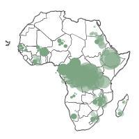 Chi si è mangiato l'Africa: in 20 anni ceduti a società straniere 30 milioni di ettari di...