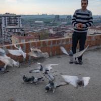 I colombi della libertà di Istanbul