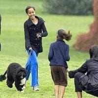 """Usa: morto Bo, il cane degli Obama. L'ex presidente: """"Ci mancherà tantissimo"""""""