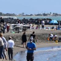 """L'indagine di Legambiente: """"Sulle nostre spiagge 783 rifiuti ogni 100 metri, l'84% sono di..."""