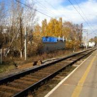 Russia, un uomo accoltella i passanti in un un parco di Ekaterinburg: 3 morti