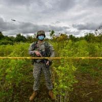 Cinquant'anni di guerra alla droga. Ma narcos e mafie hanno battuto gli Stati Uniti