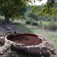 Archeologia, trovato in Sardegna un raro guerriero integro in bronzo risalente a tremila...