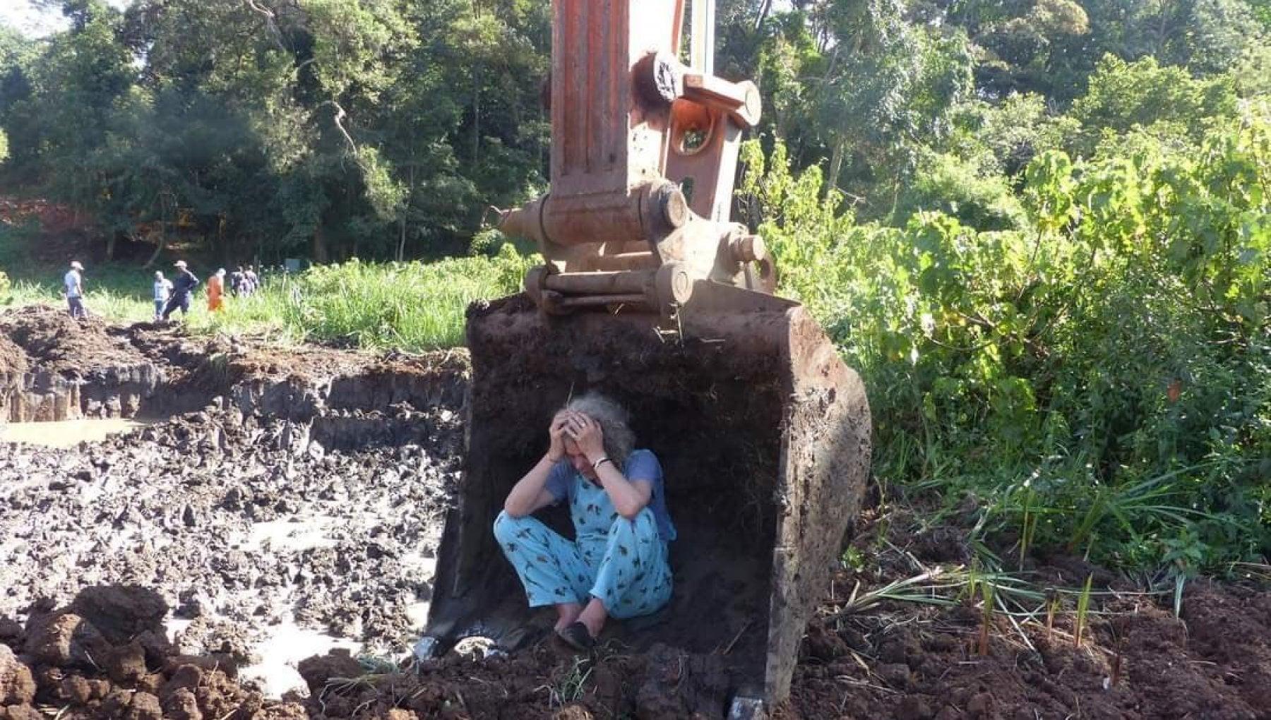 104447090 219f0128 2881 451a 9b70 de2f13f4fcd8 - Kenya, uccisa l'ambientalista Stutchbury: fermò le ruspe nella foresta Kiambu