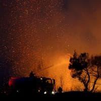 Grecia, caldo record: incendi a nord di Atene