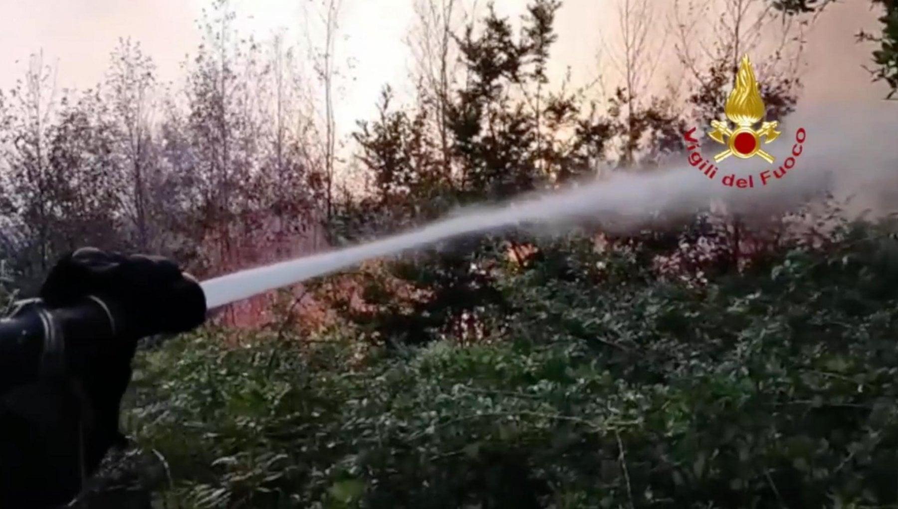 """133800902 364c72fe f566 4de4 8101 d0684381454a - Curcio: """"In arrivo il gran caldo, massima attenzione per gli incendi"""""""