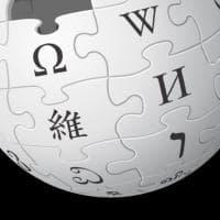 Wikipedia, al bando 7 redattori per