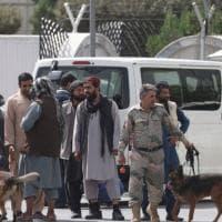 Diario da Kabul. Sono finiti i combattimenti (dei cani)