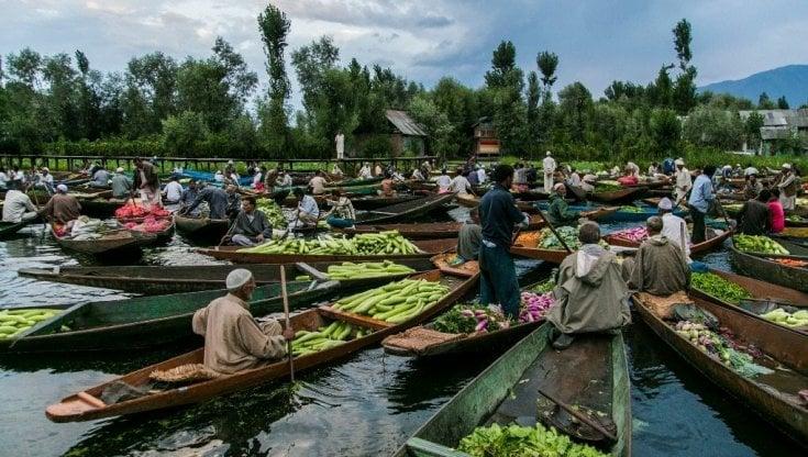 Sistemi alimentari sostenibili, in vista dei negoziati sul clima, le banche pubbliche di sviluppo uniscono le forze per aumentare gli investimenti
