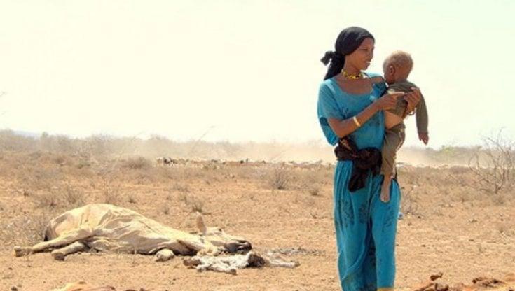 Africa, 106 milioni di persone senza cibo: le situazioni più gravi in Etiopia, Sud Sudan e Madagascar