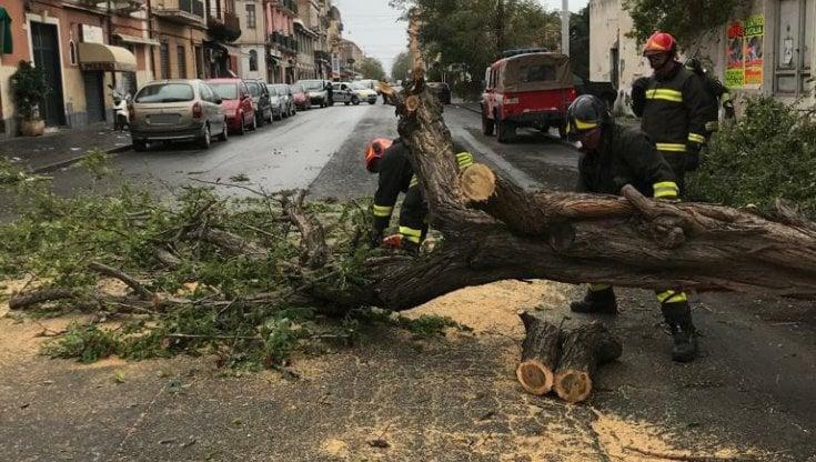 """Lesperto: """"I cicloni nel Mediterraneo saranno sempre più frequenti. Questo su Sicilia e Calabria durerà a lungo"""""""