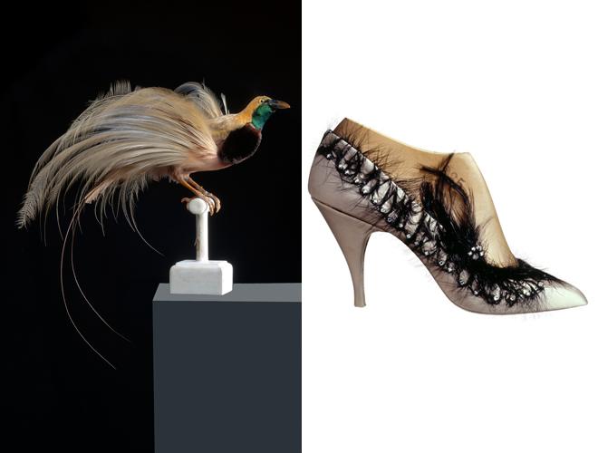 L'arte in una scarpa