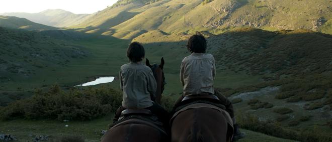Cavalli: storia di due fratelli