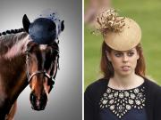 I cavalli indossano i cappellini delle principesse