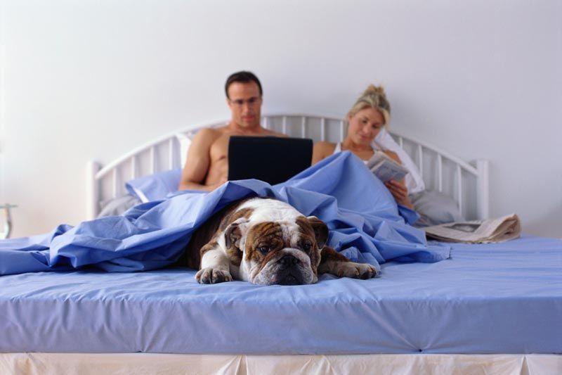 La coppia scoppia se lavori (anche) a casa