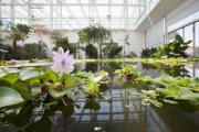 Padova e il suo giardino hi-tech