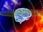 Il medico che ha iniziato a guardarci nel cervello