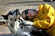 Iran: il rifugio dei cani ripudiati