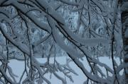 Rovaniemi e il mondo di Babbo Natale