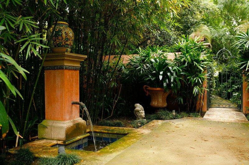 Con le piante tropicali tramuti giardino o terrazzo in una - Progetto giardino mediterraneo ...