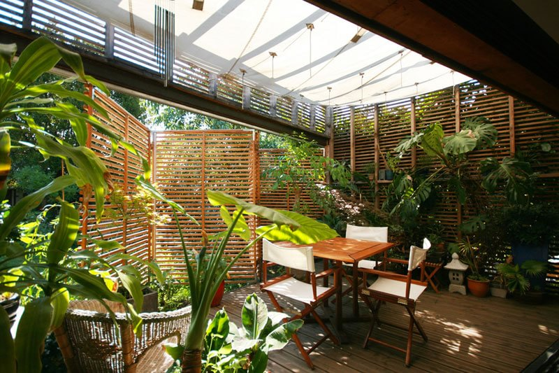 Con le piante tropicali tramuti giardino o terrazzo in una giungla rigogliosa d la repubblica - Arredare una terrazza con piante ...