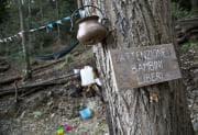 Asili nel bosco: dove trovarli e come funzionano