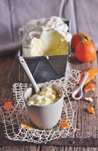 Vegan, design, gourmet, nutraceutico: come sarà il tuo gelato?