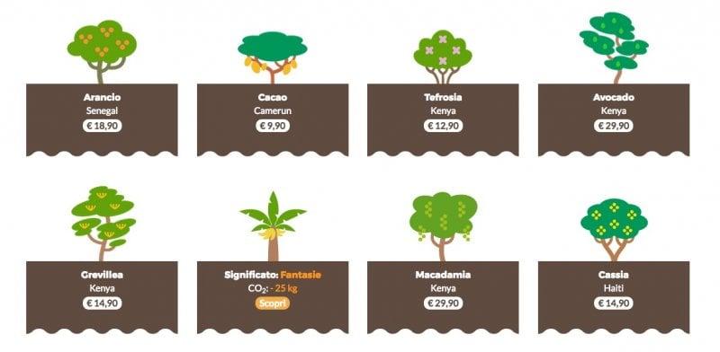Giornata mondiale dell'ambiente: regala un albero