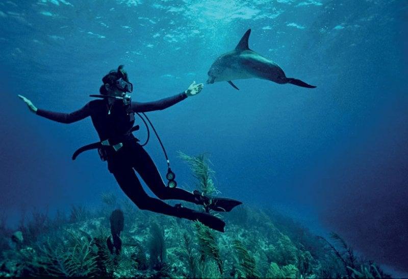 Sylvia Alice Earle, detta Her Deepness, durante le riprese del documentario di Netflix, Mission Blue.