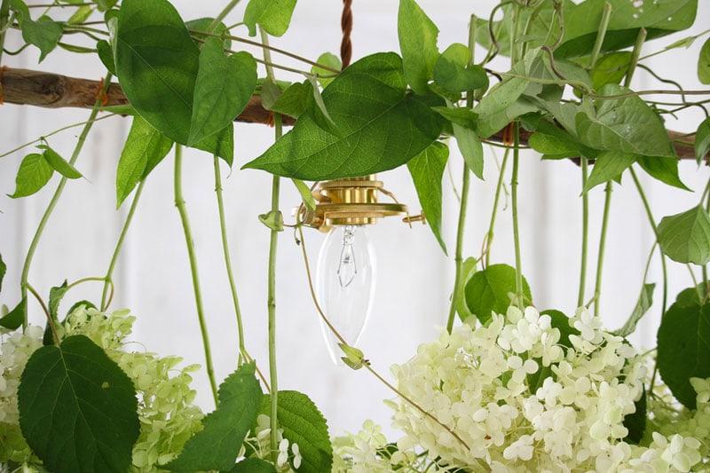 Tutorial: crea una decorazione sospesa con le ortensie
