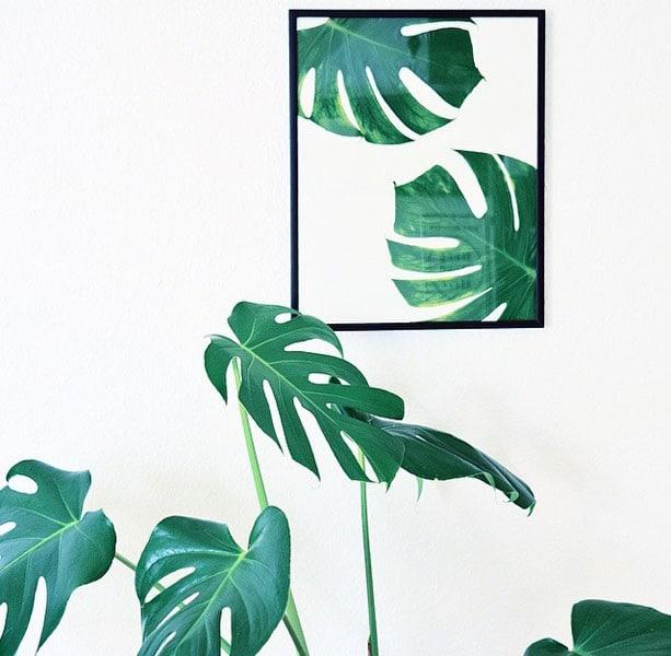 DIY & Natura: come creare dei quadretti con le foglie