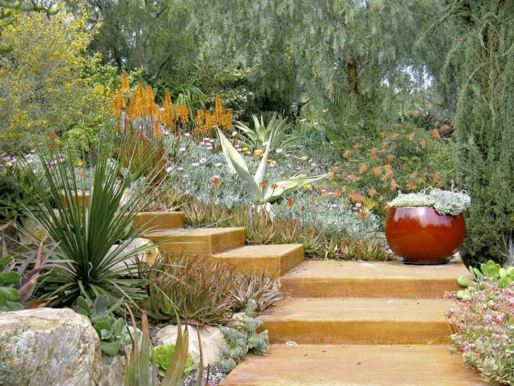 Xeriscaping: partire per le vacanze abbandonando le piante (a un felice destino)