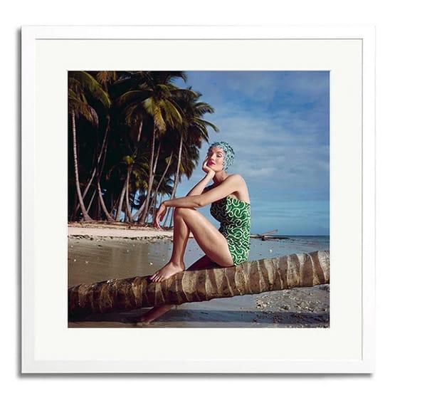 Il quadro con la foto realizzata da Norman Parkinson in vendita su Moda Operandi