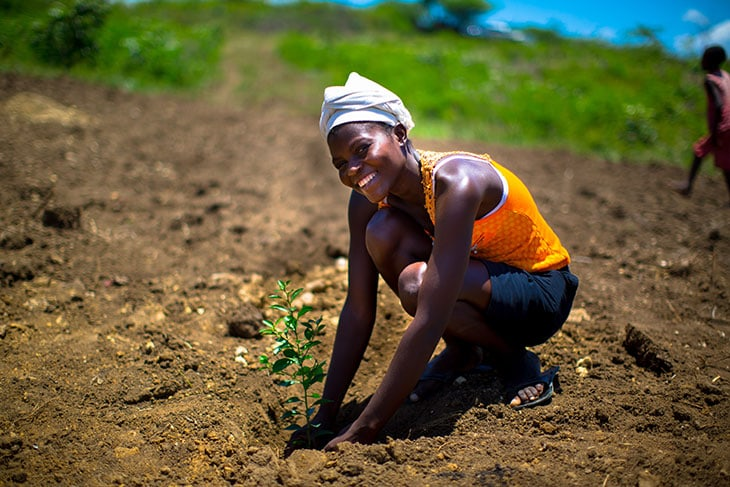 Tree planting ad Haiti. Credit: A.F. Cortes