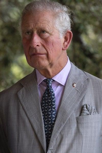 Sono il figlio segreto di Carlo e Camilla, australiano si appella all'Alta Corte