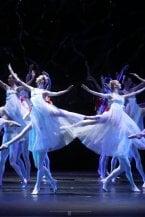 Dance with Bolshoi, a lezione di danza (gratis su Youtube) con i ballerini del teatro russo