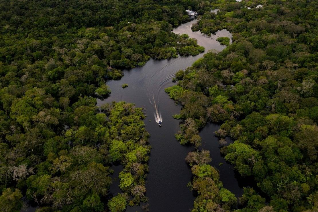Benvenuti in Amazzonia, il tour virtuale e immersivo nei suoni della foresta pluviale