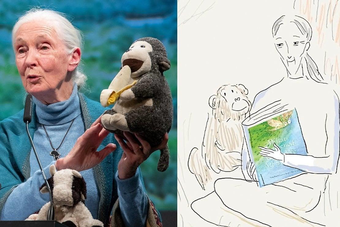 Il mondo che verrà, la voce di Jane Goodall in un corto animato sul futuro della Terra post coronavirus