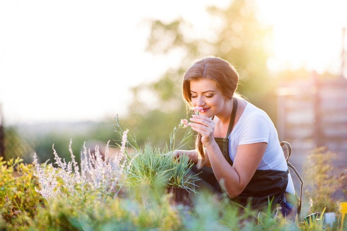 Fiori e piante aiutano a migliorare la vita e l'umore: c'è la conferma scientifica