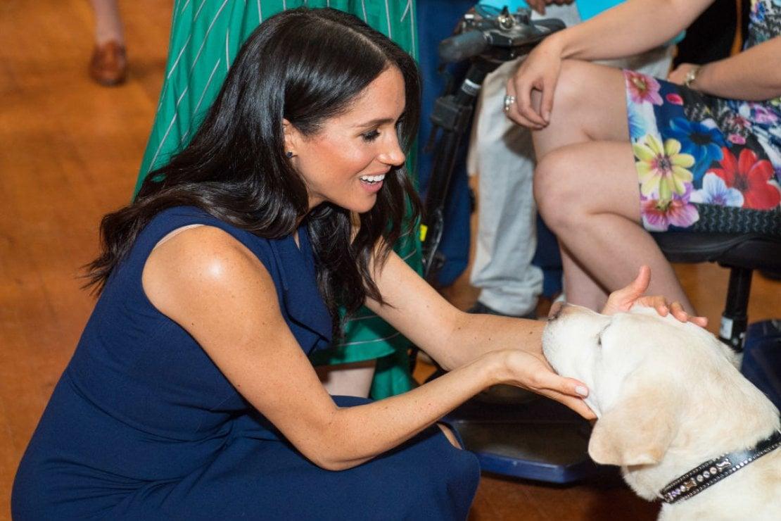 Meghan Markle accarezza un labrador durante la sua visita a Government House (ottobre 2018) a Melbourne, Australia