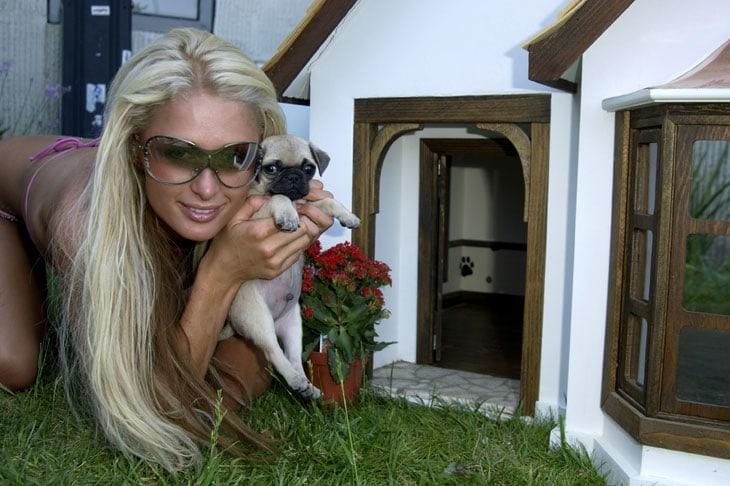 Da Beyoncè a Lady Gaga: le spese folli e senza limiti delle star