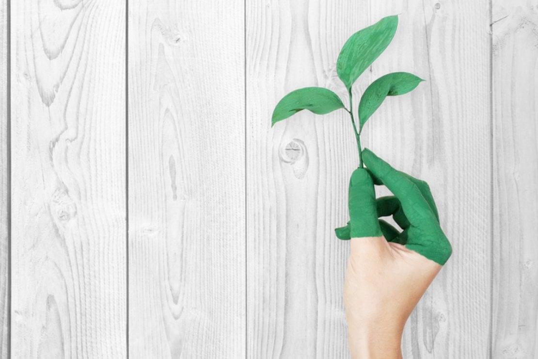 Green tips: 5 cose che dobbiamo smettere di fare per essere più ecologisti